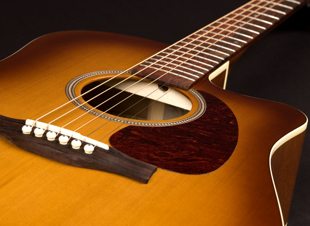 what makes a good beginner guitar part 1 tampa guitar teacher guitar lessons in tampa florida. Black Bedroom Furniture Sets. Home Design Ideas